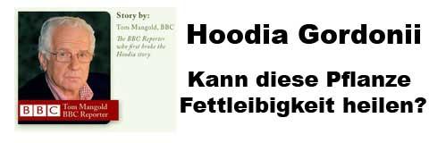 Hoodia hat eine jahrhunderte lange Geschichte der Anwendung