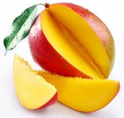 Irvingia Gabonensis, besser bekannt als Afrikanische Mango
