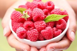 Raspberry Ketone Wie funktioniert es