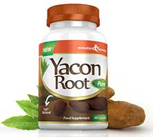 Yacot root